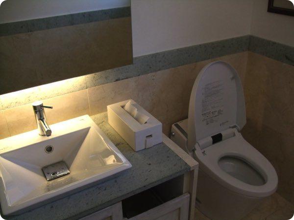便器と洗面所